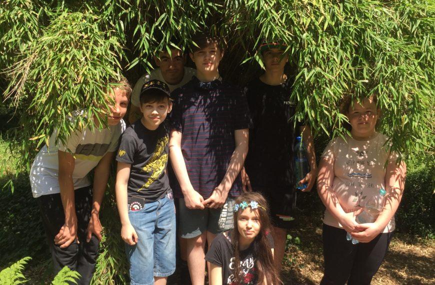 Wycieczka do Arboretum w Rogowie
